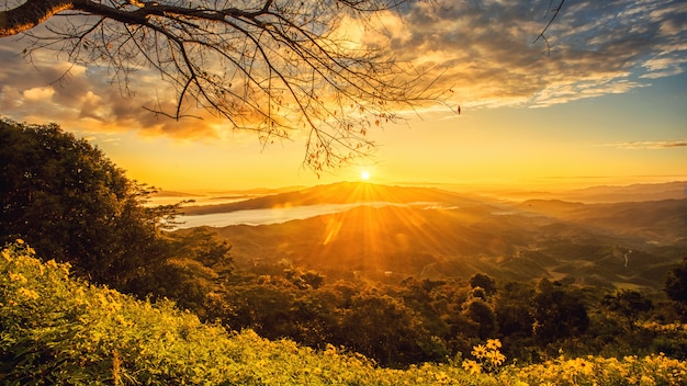 Lever du soleil dans le nord de chiang rai en thaïlande