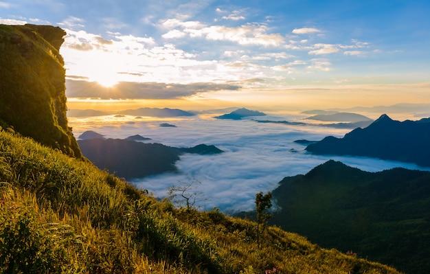 Lever du soleil et mer de brouillard au fond du parc forestier de phucheefa