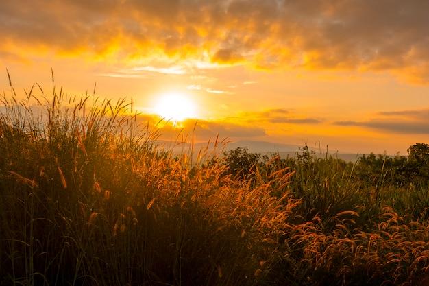 Lever du soleil sur la montagne avec des champs d'herbe à l'avant