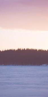Lever de soleil sur les bois enneigés