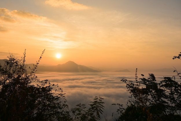 Lever de soleil sur le brouillard.