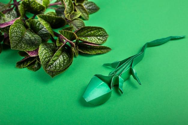 Lézard d'art fait à la main en papier origami sur fond coloré avec une branche verte sur fond coloré