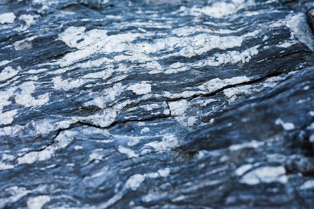 Lichen sur un rocher altéré