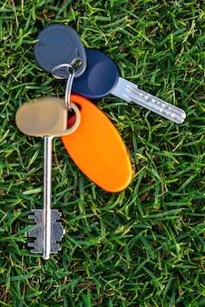 Lien clé sur l'herbe, photo verticale