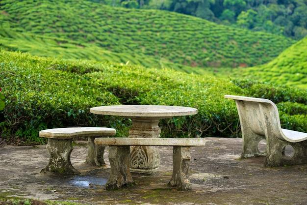 Un lieu de détente et de thé fait de meubles en pierre surplombant une vallée verdoyante de théiers.