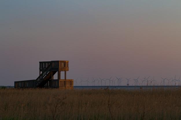 Lieu d'observation des oiseaux et moulins à vent à l'horizon
