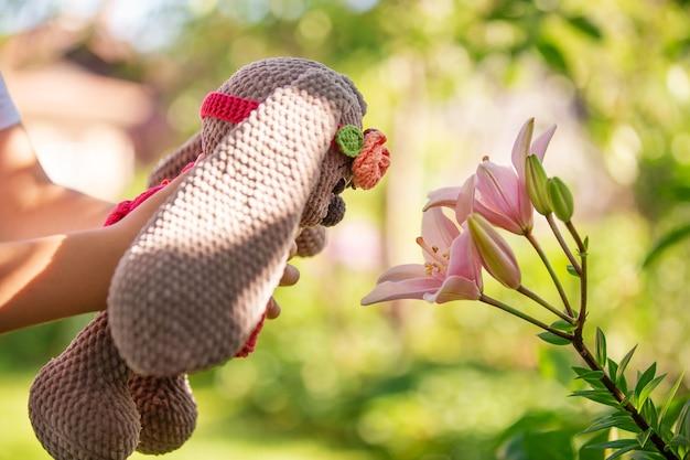 Un lièvre en peluche dans le jardin d'été sur l'herbe lors d'une promenade pour enfants