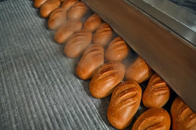 Ligne automatique pour la production de produits de boulangerie avec un pain sur un tapis roulant