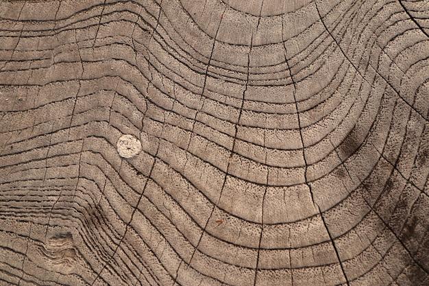 Ligne de bois sur le fond