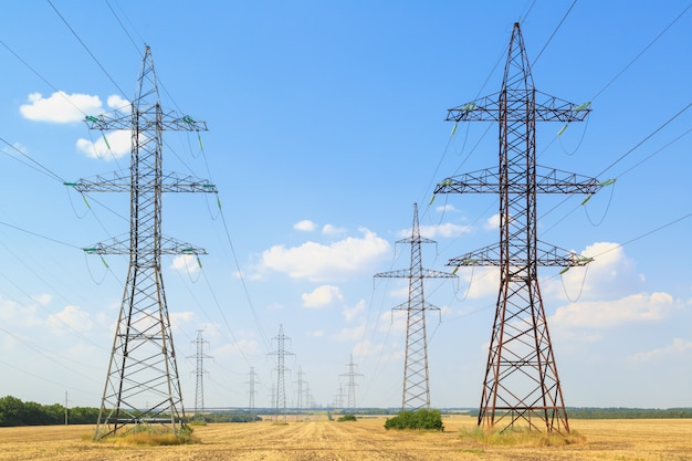 Les lignes électriques à haute tension traversent des champs jaunes