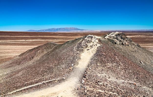 Lignes et géoglyphes de nasca. patrimoine mondial de l'unesco au pérou