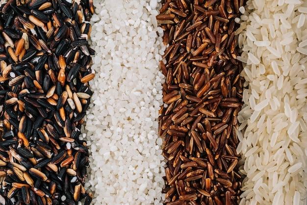 Lignes de riz assorties