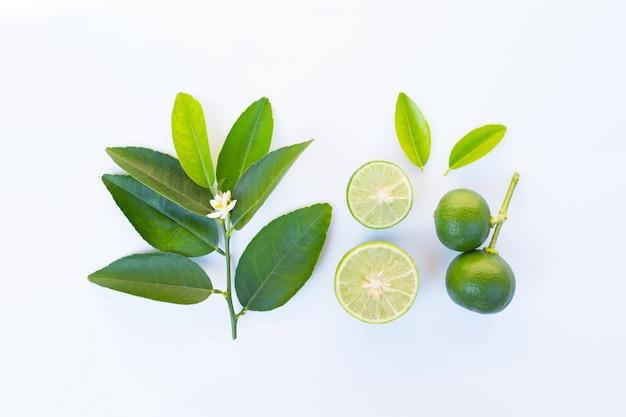 Limes avec des feuilles et des fleurs sur blanc.