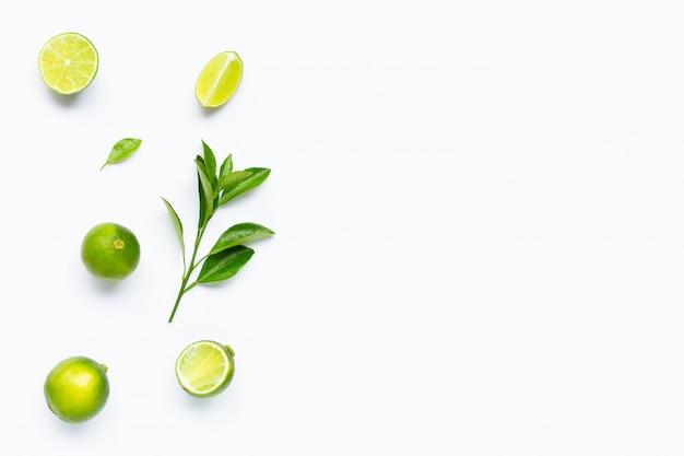 Limes avec des feuilles isolés sur fond blanc.