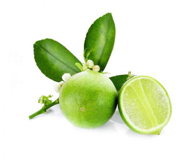 Limes isolé sur fond blanc