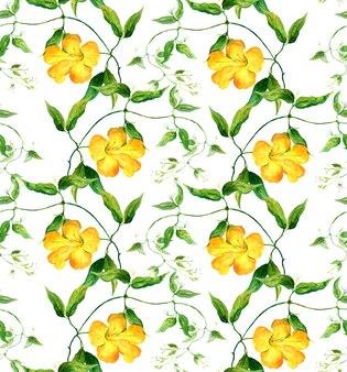 Liseron à fleurs jaunes. motif floral répétitif. aquarelle
