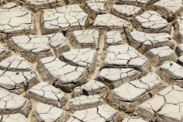 Lit de lac asséché. terrain sec. concept des changements climatiques et du réchauffement climatique.