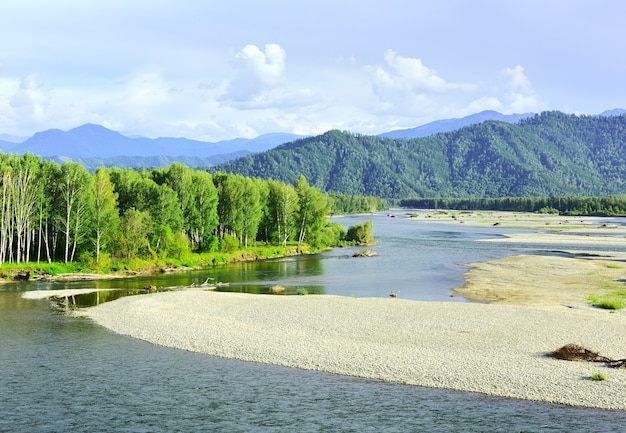 Un lit de rivière rocheux entouré d'arbres et de montagnes de l'altaï sous un ciel bleu sibérie russie