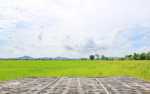 Litière en bambou et paysage découvre les jeunes rizières vertes avec le ciel et les montagnes en arrière-plan.