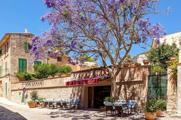 Little street cafe dans la vieille ville avec un arbre incroyable jacaranda par entrée