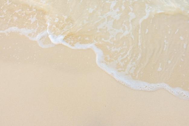 Littoral relax bleu océan de noix de coco