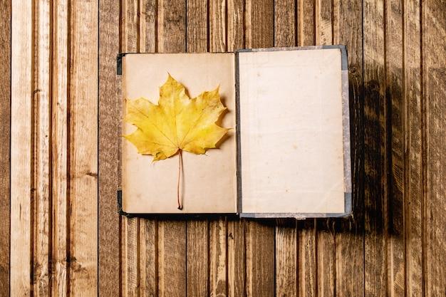 Livre et feuilles d'automne