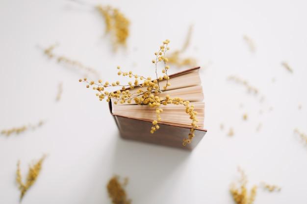 Un livre avec des fleurs de mimosa jaune sur blanc