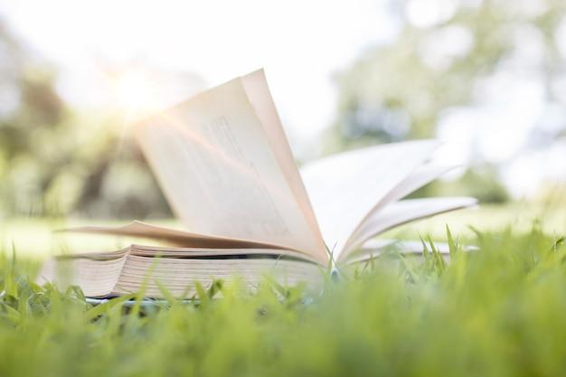 Livre sur l'herbe verte, concept d'apprentissage et de connaissance