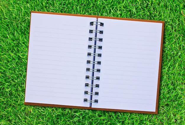 Livre ouvert sur un fond d'herbe