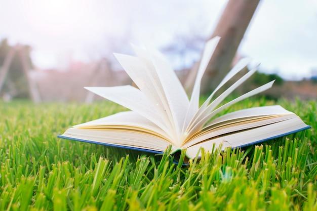 Livre ouvert sur la pelouse verte