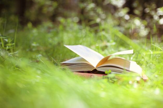 Livre ouvert en plein air. la connaissance, c'est le pouvoir. réservez dans une forêt. réservez sur une souche