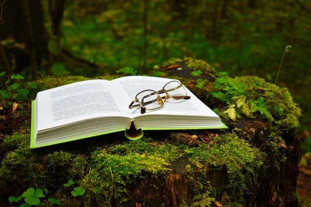 Un livre ouvert sur une souche dans la forêt