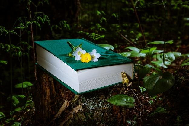 Le livre repose dans la forêt sur une souche parmi les feuilles