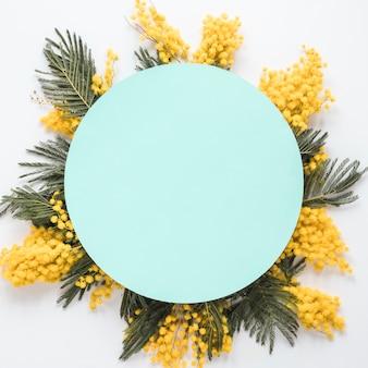Livre vert sur les branches de la fleur jaune