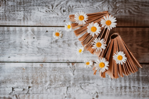 Livres anciens avec des fleurs de marguerites des champs blancs. . espace libre pour le texte