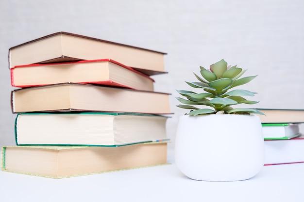 Livres cartonnés modernes empilés sur un tableau blanc avec une plante en pot vert comme un concept de lecture et d'éducation.