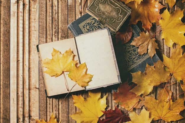 Livres et feuilles d'automne
