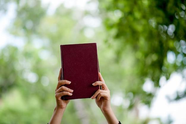 Livres et images de la main concept d'éducation avec espace de copie