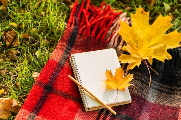 Loisirs avec une couverture chaude et des feuilles jaunes dans un parc d'automne