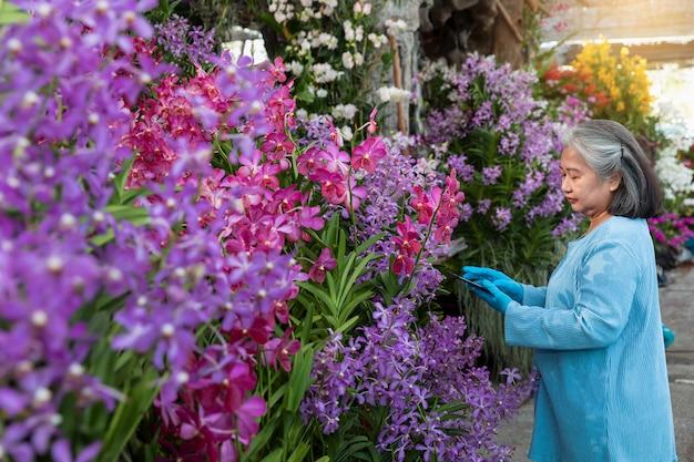 Loisirs d'une femme mature à l'aide d'une tablette numérique tout en vérifiant la croissance des fleurs d'orchidées et en travaillant dans une serre.