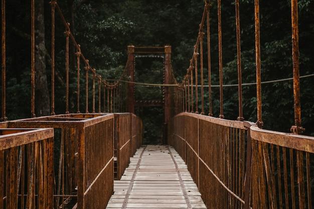Un long pont de passerelle couvert dans une forêt