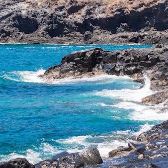 Long shot eau cristalline sur une plage sauvage