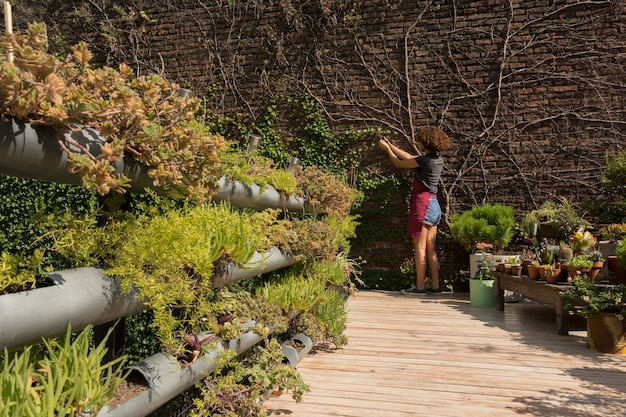 Long shot jeune femme prenant soin des plantes