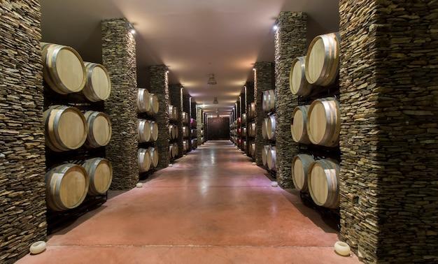 Longue cave avec des tonneaux de vin