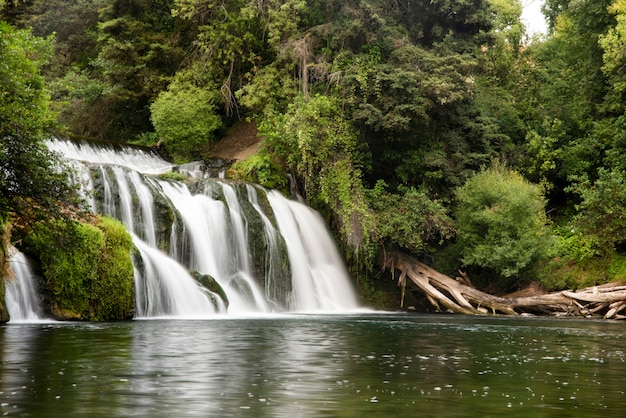 Une longue exposition de cascade dans la forêt tropicale, l'île de jeju en corée du sud