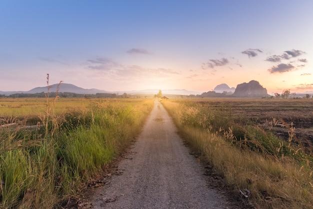 Longue route au coucher du soleil sur le terrain