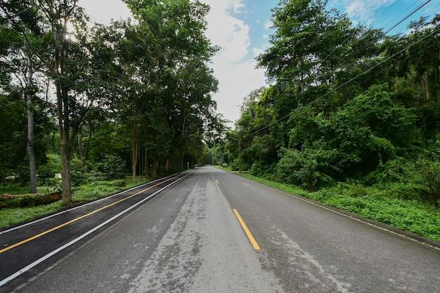 Une longue route dans le parc national.
