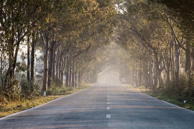 Longue route droite