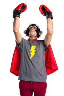 Lucky superhero monkey man avec des gants de boxe