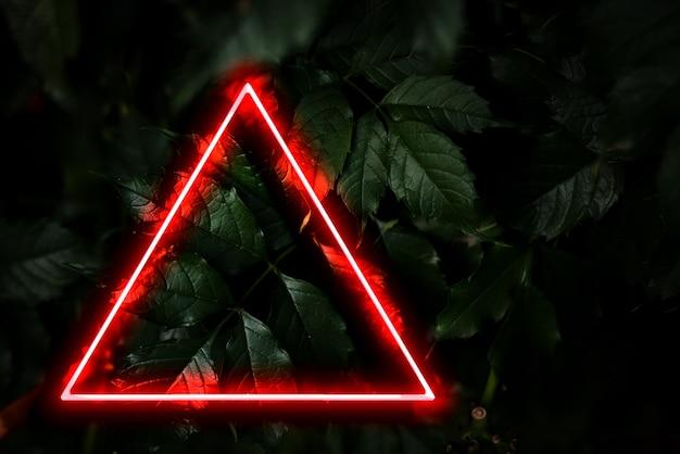 La lumière abstraite du cadre de couleur néon sur la plante d'ombre profonde laisse un concept tropical créatif